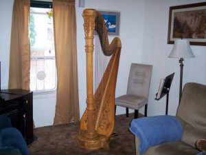 The Venus Calssic Harp I once rented from Budget Harp Rentals from Jacksonville, FL.