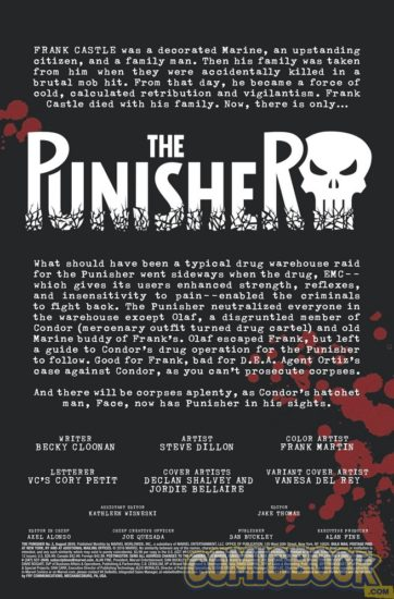 Back cover to Punisher #2